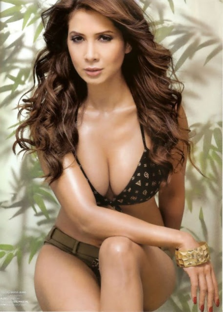 Hot  Sexy Kim Sharma Wallpapers  Santabantacom